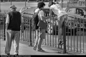 Funny Pics Fence Jumper