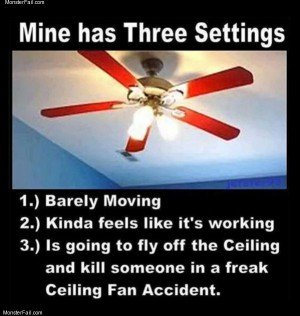 Fan settings