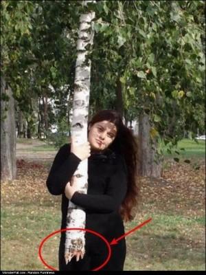 A Tree Or Umbrella