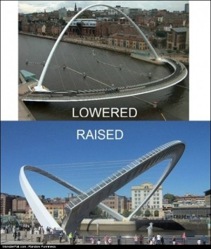 Bridge Design WIN