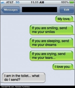 A Nice Way To Ruin A Romantic Text
