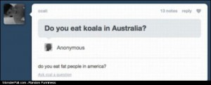 Do you eat koala in