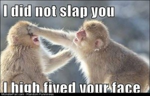 Funny Pics Did Not Slap You