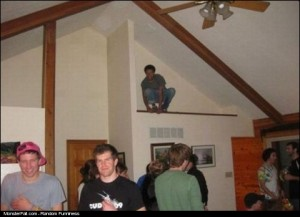 Party FAIL Owling