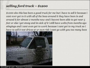 Funny Pics Selling Ford Truck