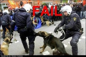 Monster Police Dog FAIL Fetch Fetch Good Boy