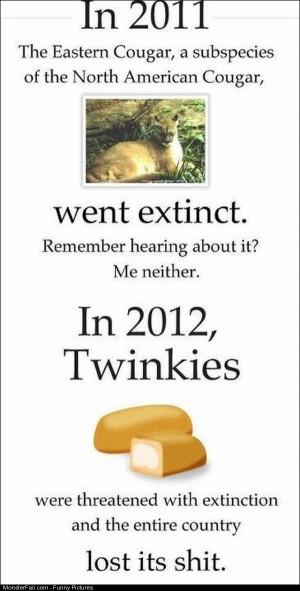 Pics Twinkies