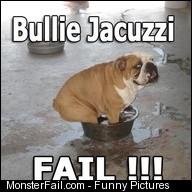 Jacuzzi Fail Bulldog