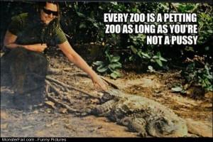 Pics Every Zoo