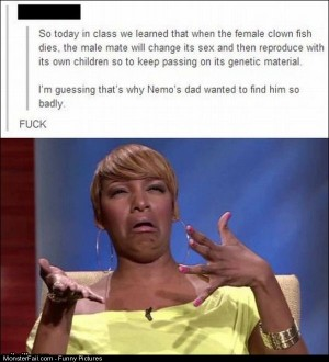 Pics Nemo