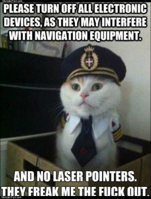 Cat pilot