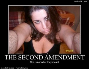 Pics Second Amendment