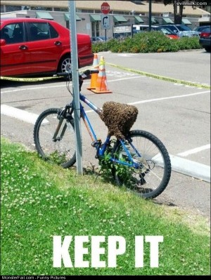 Pics My Bike