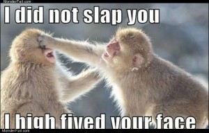 Did not slap you