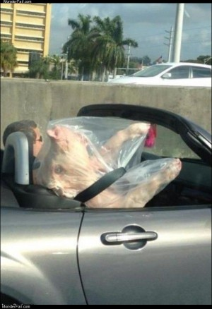 Bacon transport