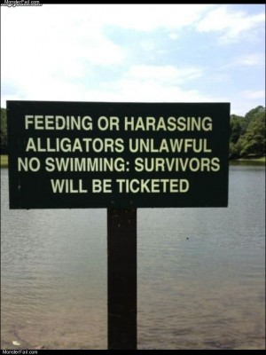 No swimming with