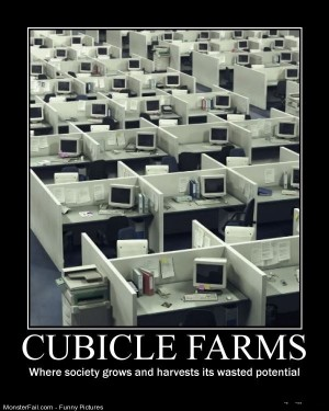 Pics Cubicle Farms