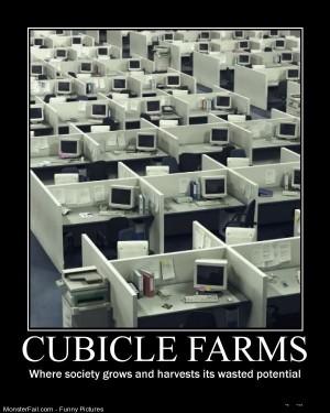 Pics Cubicle Farms