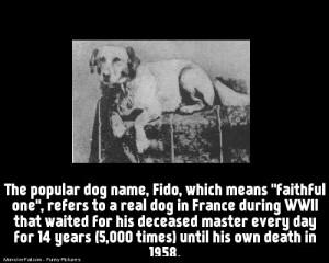 The story of Fido faithfull