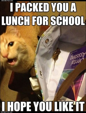 Packed you a lunch