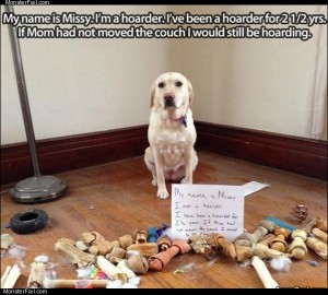 Missy the hoarder