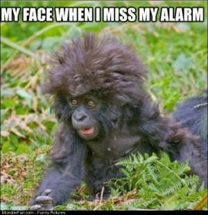 Pics Miss My Alarm