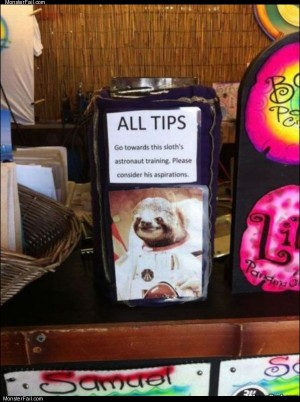 All tips