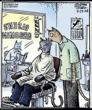 Cat barber