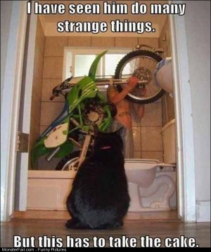 Pics Strange Things