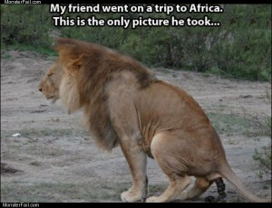 Went to africa
