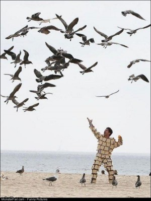 Pics The Bird Man