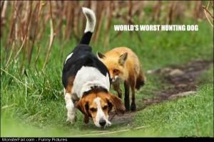 Pics Worlds Worst Huntin