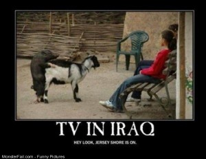 Pics Tv In Iraq