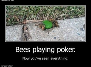 Bees playing poker