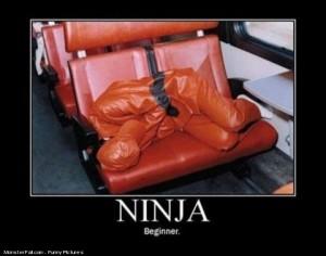 Ninja lvl Beginner