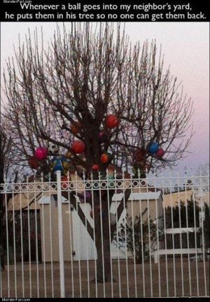 The ball tree