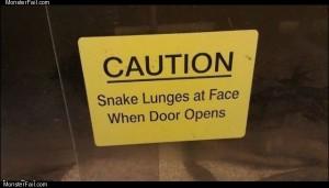 Snake caution