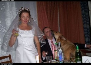 Nice wedding pic