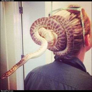 Snake hair tie