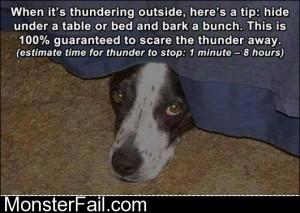 Dog Life Hack