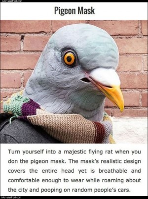 Pigeon mask review
