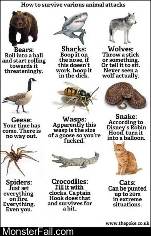 How To Survive Various Animal Attacks