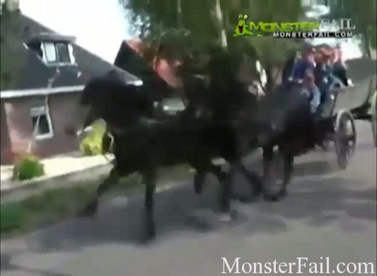 Crazy horse destroys Amish Festival