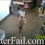 mexican drug cartel dog trained to dance.
