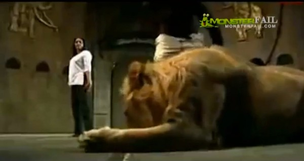 Lion attacks dancing girl. Girl Fail