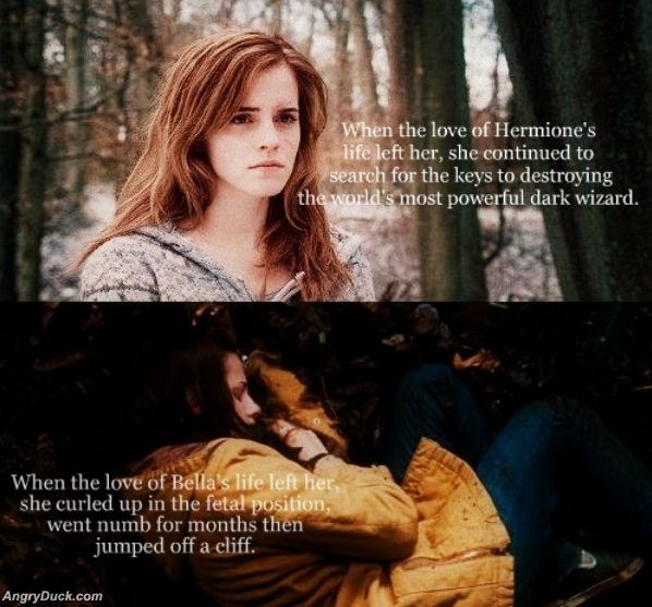 Hermione_Vs_Bella