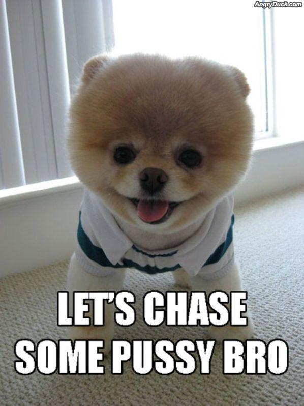 lets go bro